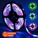 Maak 3528 Lichten van de Strook waterdicht SMD 120 LEDs, Kleur die de LEIDENE Lichte Uitrusting van de Strook met Ver Controlemechanisme veranderen