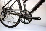 Boa bicicleta de montanha Shimano do preço Alivo 9 bicicletas da aptidão da velocidade (FS1-7)