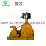 12MPa de Compressor van het Gas van het Diafragma van het Methaan van de Druk van de lossing