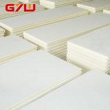 Panneau de chambre froide d'unité centrale de fournisseur de la Chine pour la pièce d'entreposage au froid de construction