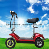 숙녀를 위한 3 바퀴를 가진 전기 Trike