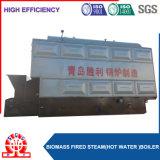 Kraftstoff-Reis-Hülse-hölzerner Staub-Dampfkessel der Lebendmasse-6ton