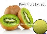 부유한 비타민 100% 자연적인 키위 추출 또는 Actinidia 분말 4:1 ~10: 1