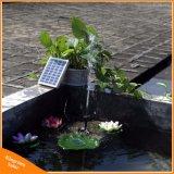 piante solari alimentate solari dello stagno del raggruppamento del giardino di CC della pompa della fontana di acqua di 9V 2W che innaffiano kit