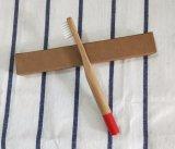 Il bambù dell'amico di Eco dell'ambiente rizza il Toothbrush (BC-T1038)