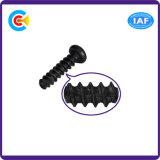 건물 철도 브리지를 위한 DIN/ANSI/BS/JIS Carbon-Steel 또는 Stainless-Steel 교차된 테일 두드리는 나사
