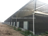 51000m3/H Indusrtial Exhasut ventilateur Ventilateur axial de ventilation