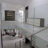 Het Systeem van het Traliewerk van het Glas van het Flard van Frameless van de Prijs van de fabriek voor de Leuning van het Terras en van de Trap