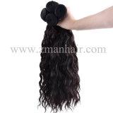自然な巻き毛の自然なカラー長いRemyの人間の毛髪の編むこと