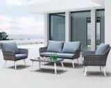Pátio com jardim de vime Home Hotel Molas Escritório Conjunto lounge Piscina sofá (J689)