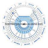 Calcolatore della rotella di gravidanza BMI della scadenza