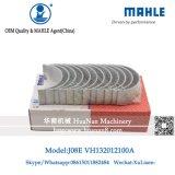 Mahle J08e capas para SK330-8