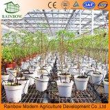Fabrik-Herstellungs-Landwirtschafts-Garten-Berieselung-System