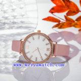 Nom personnalisé de regarder l'entreprise en alliage de montres (WY-17027A)