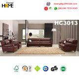 Sofá americano da mobília antiga 1+1+2+3 do estilo ajustado (HC3013)
