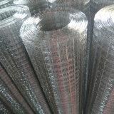 1/2のインチ1m * 25mのロールスロイスによって電流を通される溶接された金網