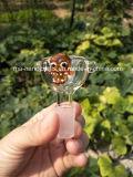 Schädel-Glasfilterglocke/Fantasie-rauchende Filterglocke/rauchende Zubehör