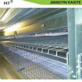 Système des cages en PP blanc de volaille Le fumier de volaille feuille/plaque du convoyeur