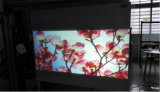 1,52x30m, blanco de la pantalla de proyección trasera Filmfor Exposiciones /Área de Deportes/Videoconferencia