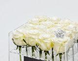 Коробка цветка Rose коробки цветка Rose шикарного подарка 16 коробки цветка Rose акриловая