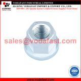 La norme DIN 6331 l'écrou hexagonal en acier galvanisé avec collier