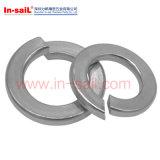 DIN127A affinent la qualité les rondelles de freinage carrées de ressort d'extrémités galvanisées