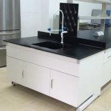 L'école secondaire de l'Université de mobilier de laboratoire laboratoire d'acier Workbench