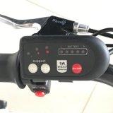 """повелительница Город Электрическ Bike конкурентного преимущества 36V 250W 26 """" для сбывания"""