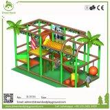 De hete Verkoop Aangepaste BinnenSpeelplaats van de Kinderen van het Ontwerp Commerciële
