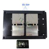 Quadrato (4) deviazione standard Sdio, SDHC, Sdxc TF alla carta dell'adattatore di SATA con RAID0