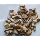 Haut de la nutrition naturel organique séché champignon shiitake tige