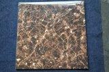 HS622gn marrón oscuro barniz Piso de baldosa/Mármol Emperador