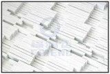Structural isolant Partie Processed par SMC Sheet