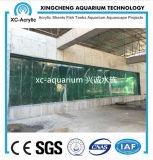 Precio submarino del proyecto del mundo del acuario de acrílico claro
