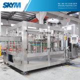 Pequeña máquina de consumición automática en botella de la planta de embotellamiento de agua mineral
