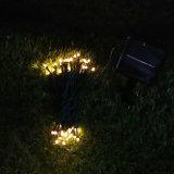 Insertar cadena de luz LED Planta de energía solar para el jardín o el Camino