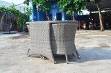 庭のヤードのデッキの屋外の生きているテラスのホームホテルのオフィスのバルコニー表Adnの椅子(J268)