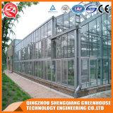 건축재료 다중 경간 Venlo 유리 온실