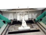 El mezclador concreto famoso de Changli Js500 de la marca de fábrica en Sri Lanka