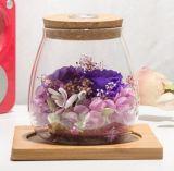 La luz colorida florece la botella para el regalo del día de tarjeta del día de San Valentín