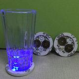 De reclame van van de LEIDENE van Woorden de Sticker Onderlegger voor glazen van de Fles met Embleem (4040)
