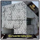 Panneau de mur en aluminium extérieur de construction commerciale avec la forme moderne
