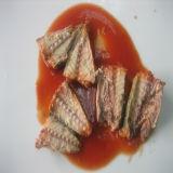 155g ingeblikte Sardines in Tomatensaus