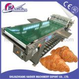 Acero inoxidable del Croissant de la máquina semiautomática de Moudling con precio barato