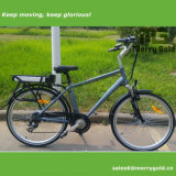 2017 Bicicleta eléctrica de 250W más alta para adultos