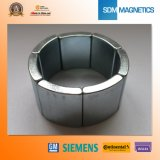 ISO/Ts 16949 de Gediplomeerde Permanente Gezamenlijke Magneet van het Neodymium
