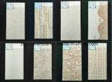 Het natuurlijke Bouwmateriaal van de Tegel van de Vloer van de Muur Ceramische