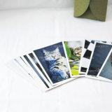 أدب وفنية منظر طبيعيّ بطاقة طباعة (مع غلاف)