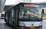 Alto brillo LED multicolor muestra de la exhibición en autobús para pasajeros