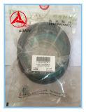 Sany Exkavator-Arm-Zylinder-Dichtungs-Teilenummer 60266031 für Sy16